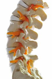 Cervical Thoracic and Lumbar Injections