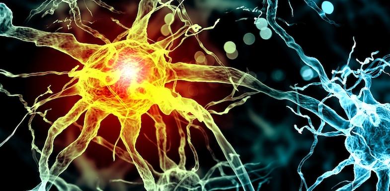 What Controls Pain Sensitivity? | NVCPC.com